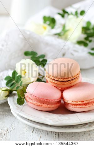 strawberry and chocolate macaroon decorated with flowers of wild rose on a white background