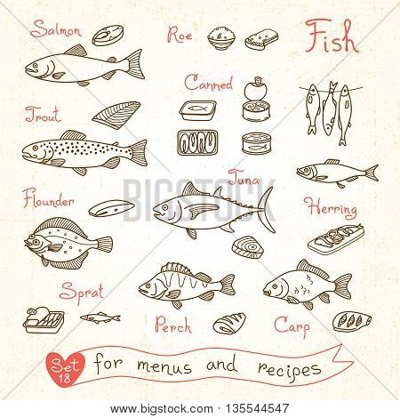 Set drawings of fish for design menus, recipes and packing. Trout, herring, sprat, flounder, perch, carp, tuna, salmon roe canned fish Vector illustration