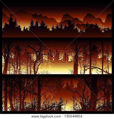 Wildfire background. Burning forest vector horizontal banners. Forest fire design template. landscape nature, wood natural panorama. Outdoor wildfire design template. Forest fire banner collection.