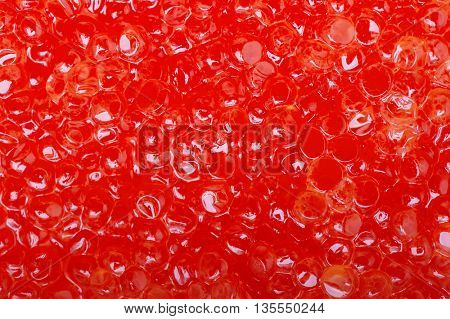 Red caviar texture