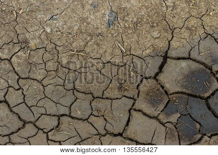 Dry Cracked Grey Earth Background