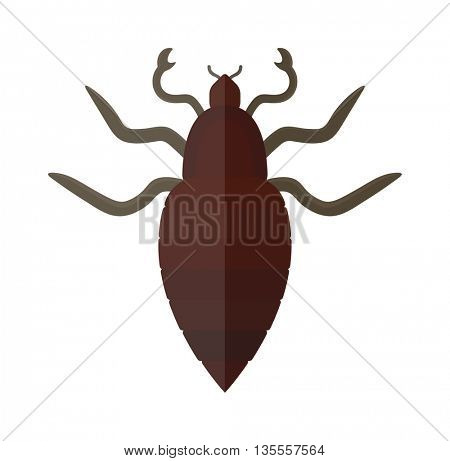 Mole insect isolated on white background vector