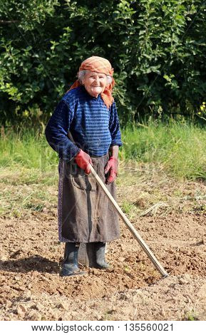 GORNA BELA CRKVA MACEDONIA - JUNE 23 2016 : In the village of Gorna Bela Crkva near city of Resen Macedonia an 83 years old peasant woman digging in a family field.