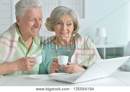Senior couple portrait with laptop and tea at home