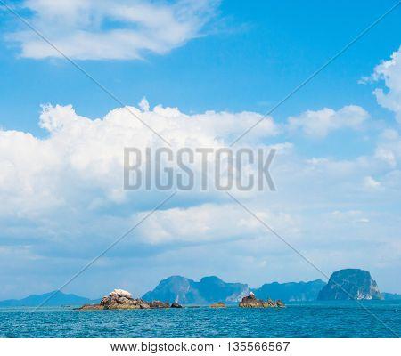 Sea Scene Marine Fantasy