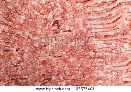 Forcemeat close up