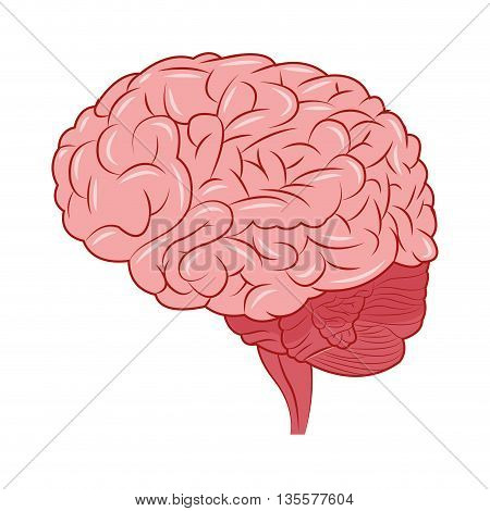 flat design of human brain sideview icon vector illustration