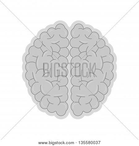 flat design of grey human brain icon vector illustration