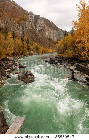 Landscape with rapid river in autumn mountains