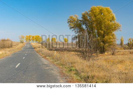 Empty rural road in Ukraine at fall season