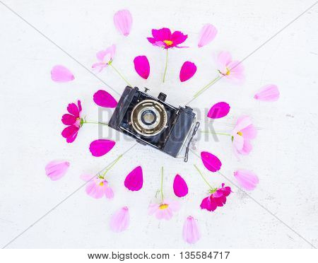 Cosmos and jasmine flowers with retro camera flat lay scene
