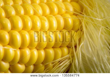 Fresh corn on cobs on wooden table, closeup