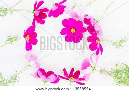 Cosmos pink flowers festive frame composition on white table with copy space