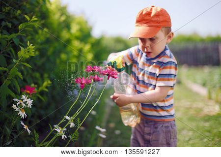 kid sprinkle flowers from bottle sprayer. cute boy spraying flowers in the garden. watering flowers. selective focus