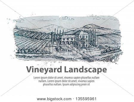 Vineyard landscape. Hand-drawn sketch farm, agriculture, harvest winery