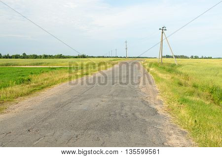 Old paved road lies through a field.It connects two villages.