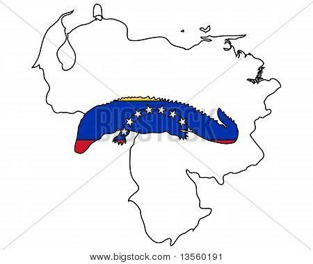 Jacaré Venezuela