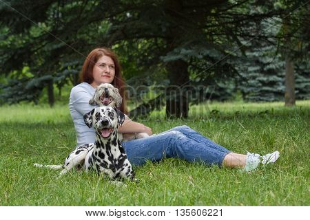 Dogs and their owner sitting on the grass (dalmatian in focus)