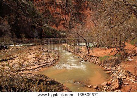 North Fork of the Virgin River along Riverside Walk, Zion National Park, Utah