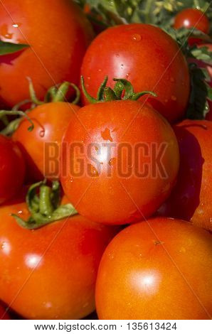 Fresh cherry tomatos  background. Red  healthy tomatoes