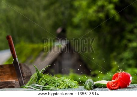 Fresh Vegetables Over Green