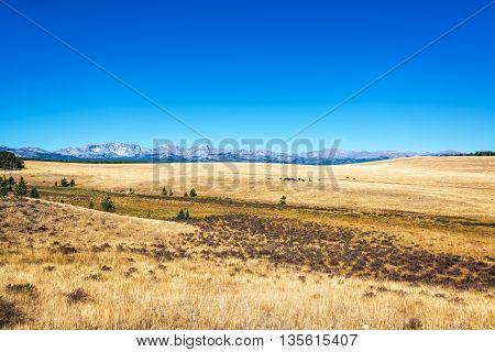 Dry Fields In Wyoming