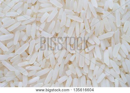 Close up of grains of jasmine rice