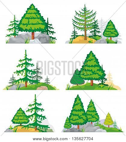 Landscapes with coniferous trees, grass and stones. Vector landscape nature with tree and plant. Forest landscape illustration of set