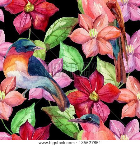 Watercolor clematis with birds seamless pattern. Hand drawn garden background