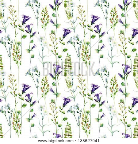 Watercolor meadow flowers seamless pattern. Watercolor bellflowers and herbs background. Hand painted illustration