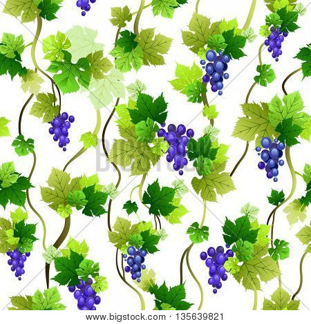 Blue grapes seamless pattern. The natural design banner,ticket, leaflet and so on. Place for text. Isolated elements.