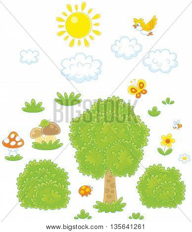 Objects for a woodland scenery. Vector illustration of a green tree, bushes, mushrooms, clouds, grass, sun, a flying bird, a butterfly, a bee and flowers, on a white background