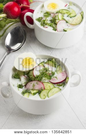 Traditional Russian Summer Cold Soup - Okroshka With Garden Radish, Cucumber, Kefir (yogurt), Fennel