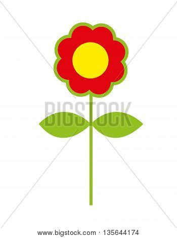 flower colorfull isolated icon design, vector illustration  graphic