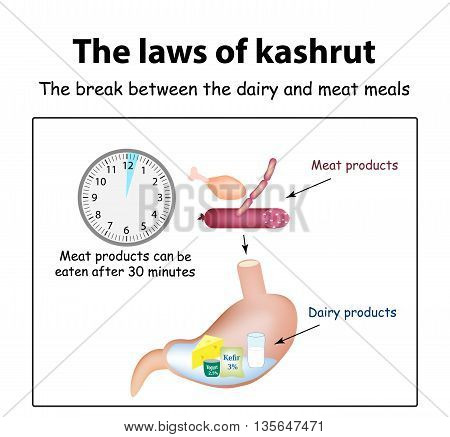 The laws of kosher. The break between the dairy and meat meals. Kosher dairy products in the stomach. Kosher meat products. Vector illustration on isolated background.