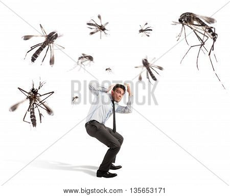 Giant mosquitoes attacking a frightened scared man