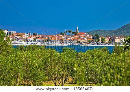 Town of Biogead naMoru and olive grove Dalmatia Croatia