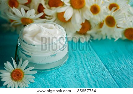 Cosmetic cream with camomile flower for a body and face on blue wooden table
