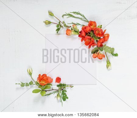 Scrapbook page of wedding or family photo album frame with red Chaenomeles japonica flowers and green leaves on light wooden background; top view flat lay overhead view