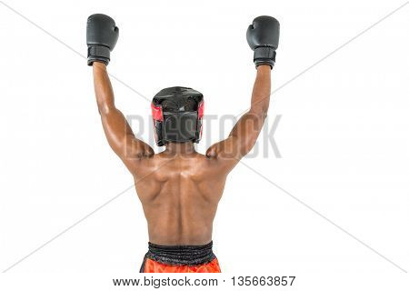 Rear view of boxer posing after victory on white background