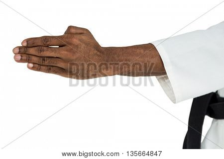 Fighter doing karate chop on white background