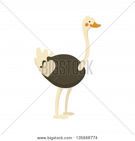 Ostrich Realistic Childish Illustration In Simple Cute Vector Design Isolated On White Background