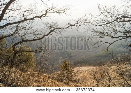 Landscape through the branches. Spring Nature Caucasian Mineral Waters in the area.