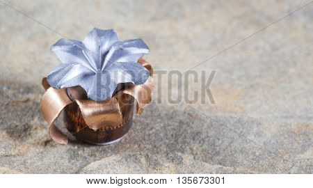Hollow point with copper jacket that has expanded on impact
