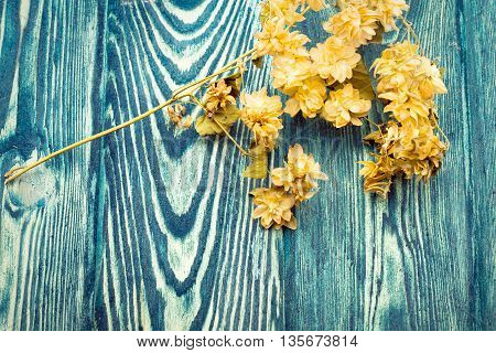 yellow seasonal branch with dried bloom flowers lying on textured bright blue wooden background copy space