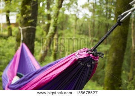 soft hammock on trees in forest summer