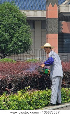 Gardener With Gasoline Hedge Trimmer Is Doing His Work