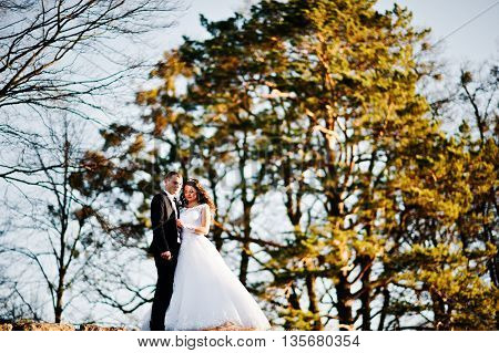 Wedding Couple At Sunshine Stay At Wall Background Wooden Forest