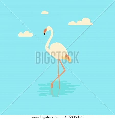 Vector illustration of a white flamingo standing in water on one leg. Exotic bird made in flat style. Flat flamingo bird symbol. Flamingo icon. Flamingo vector silhouette isolated on blue background.