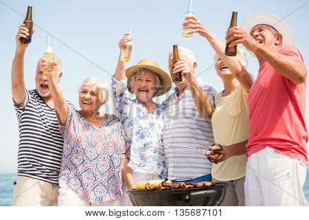 Seniors having barbecue on a sunny day